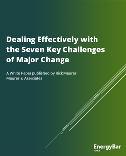 Dealing Effectively with the Seven Key Challenges of Major Change